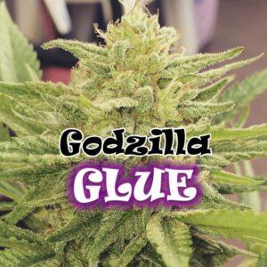 Godzilla Glue fem Dr Underground