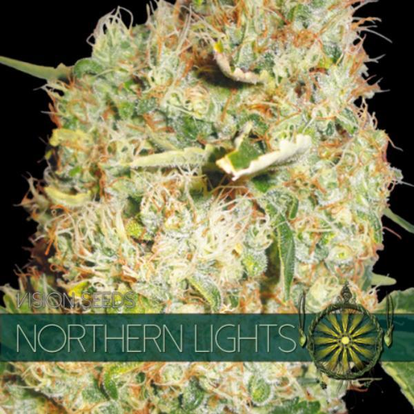 Northern Lights fem Vision Seeds