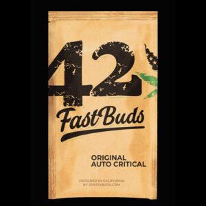 critical fast buds campo di canapa