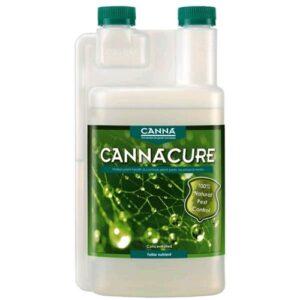 CANNA CURE RICARICA 1L