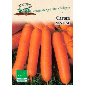 carota nantese arcoiris